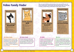 cats protection key stage 2 booklet 2