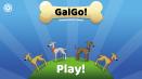 GalGo!