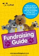 dt fundraising