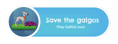 Save the galgos